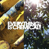 EverythingIs1Yr.compilation Cover Art