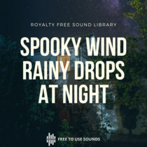 Windy Night & Dripping Rain! Spooky, Eerie & Mysterious Sounds cover art