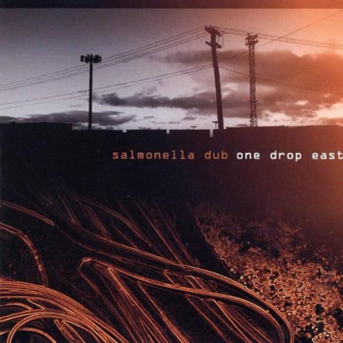 cd salmonella dub