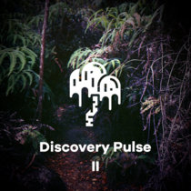 Discovery Pulse 2 cover art