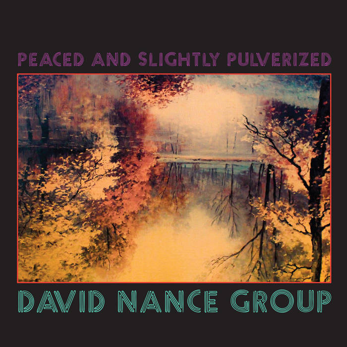 DAVID NANCE GROUP
