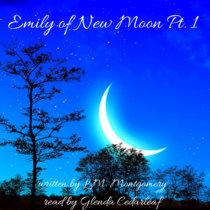 Bedtime Story Emily of New Moon Pt.1 cover art