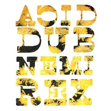 ACID DUB 18 main photo