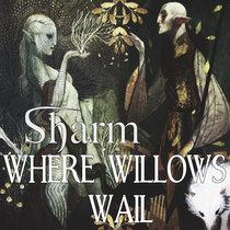 Where Willows Wail cover art