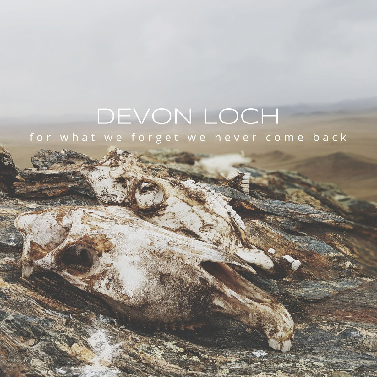 Devon Loch - For What We Forget We Never Come Back (2018)