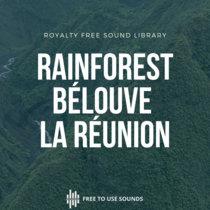 Rainforest Ambience Forest Bélouve La Réunion Island cover art