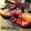 PANCREATITE NECRO HEMORRAGICA: Gross Hymns To Grotesque Pathology - CD