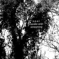 Awake And Screaming cover art