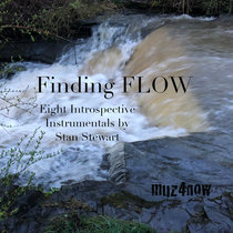 Finding FLOW cover art