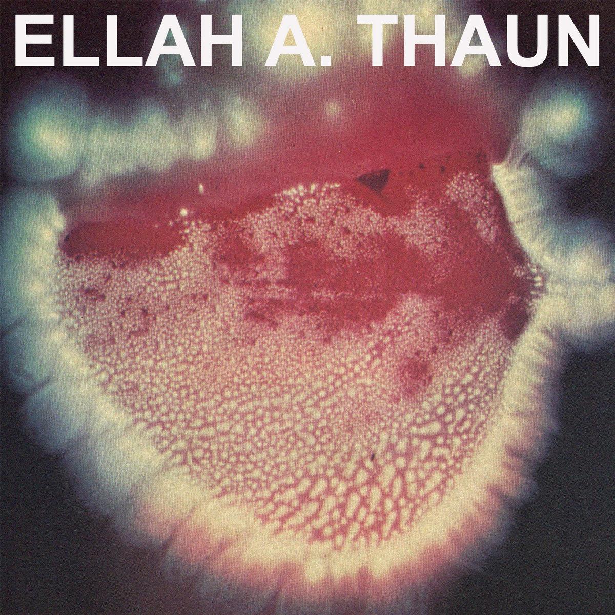 Selenite Vox | Ellah a  Thaun