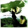 Falcon Glove Cover Art