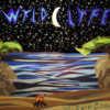 Wizard Beach Cover Art