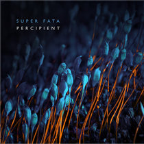 Percipient cover art