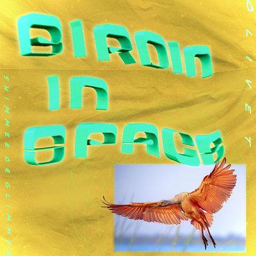 Birdin In Space EP w/ Martyn Bootyspoon & Overland remixes [SR45] main photo