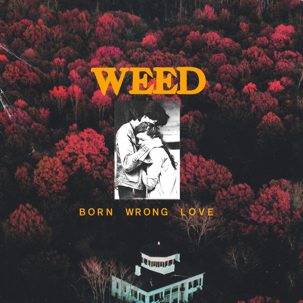 Image result for Weed: Born Wrong Love