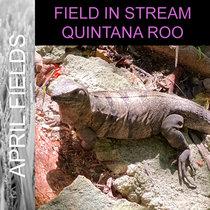 Quintana Roo cover art