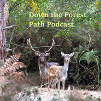 Down the Forest Path Podcast (Series Two) cover art