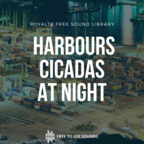 Harbours And Cicadas At Night! Spooky Ambience Le Port, La Reunion cover art
