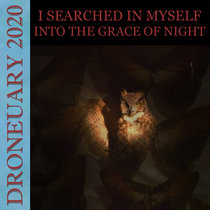 Into The Grace Of Night cover art