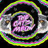 The Cat's Meow ft. Amir Yaghmai
