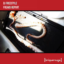 [BR038] : Dj Freestyle - Freaks Report [2020 Remastered Version] cover art