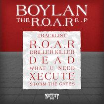 Boylan- The R.O.A.R ep (Rotpot 003) cover art