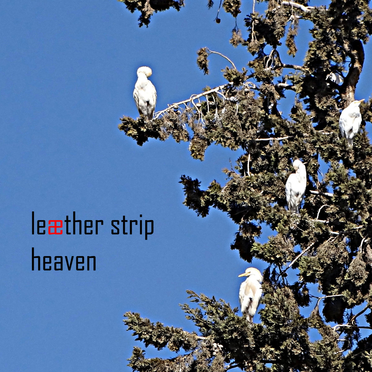 depeche mode heaven download free mp3