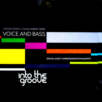 Into the groove by Voice & Bass