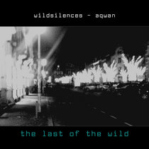 the last of the wild - wildsilences with aqwan cover art