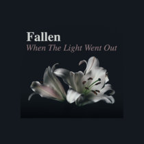 When The Light Went Out cover art