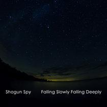 Shogun Spy - Falling Slowly Falling Deeply cover art