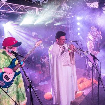 Music | LIVE TOMATO DODGERS BOOTLEGS V RARE