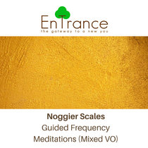 Noggier Scales Guided Frequency Meditations (Mixed VO) cover art