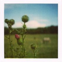 La Douleur Exquise EP cover art