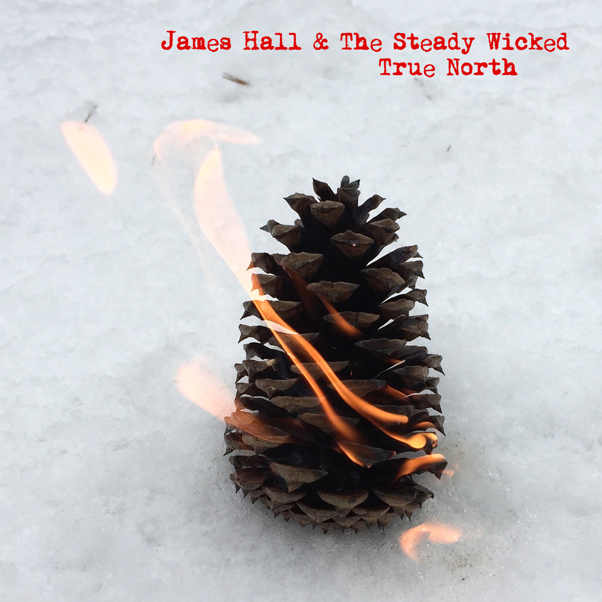 True North (Single) by James Hall & The Steady Wicked