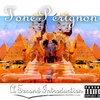 Tone Perignon: A Second Introduction Cover Art