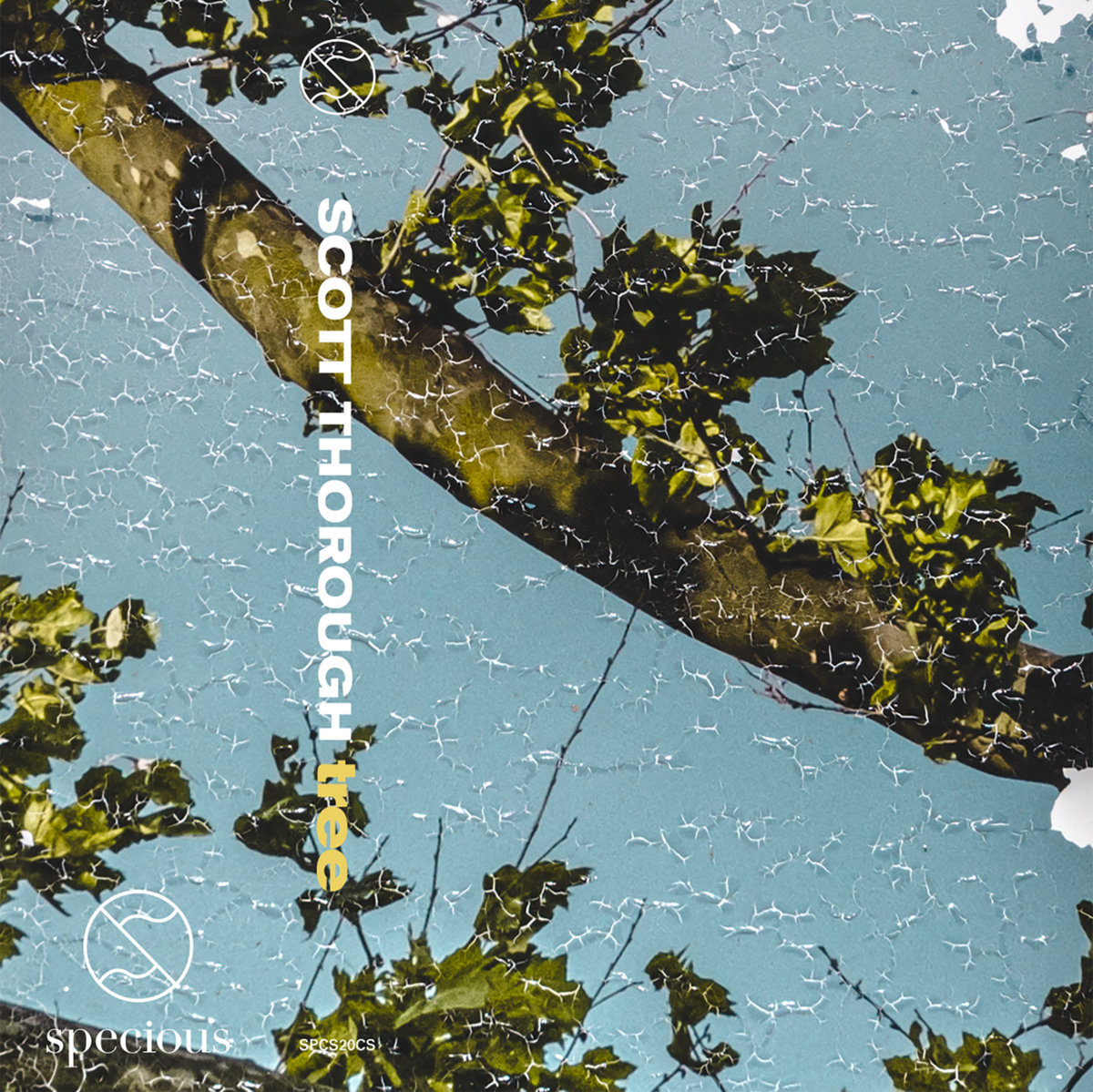 Blue abstract cover art of Scott Thorough's second solo album, tree.