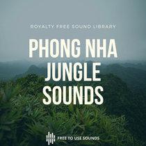 Nature Sounds   Rainforest Sounds Phong Nha National Park Vietnam cover art