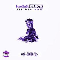 Lil B.I.G. Pac    Chopped x Screwed cover art