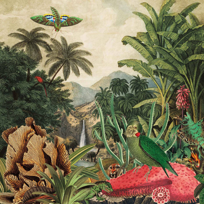 Imaginary Island Music Vol.1: Canary Islands