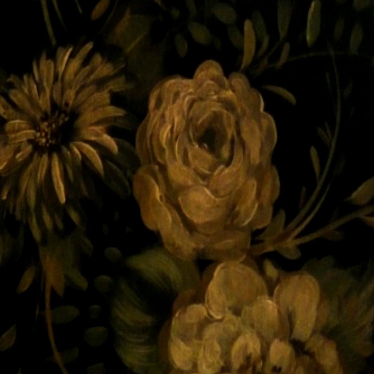 I'm Sorry ft  DRK$PRK /// Prod  Orchids | Beta Lee