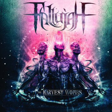 The Harvest Wombs - Fallujah