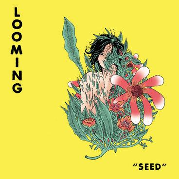 Seed main photo