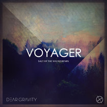 Voyager (Salt Of The Sound Remix) cover art