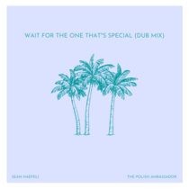 Wait For The One That's Special (Dub Mix) feat. Sean Haefeli cover art