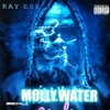 Mollywater Cover Art