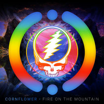 Fire on the Mountain (Cover) cover art