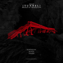 Bridge of Transition cover art