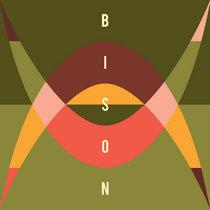 Bison - New Moon Boy (Conrad Idjut Dub One) cover art