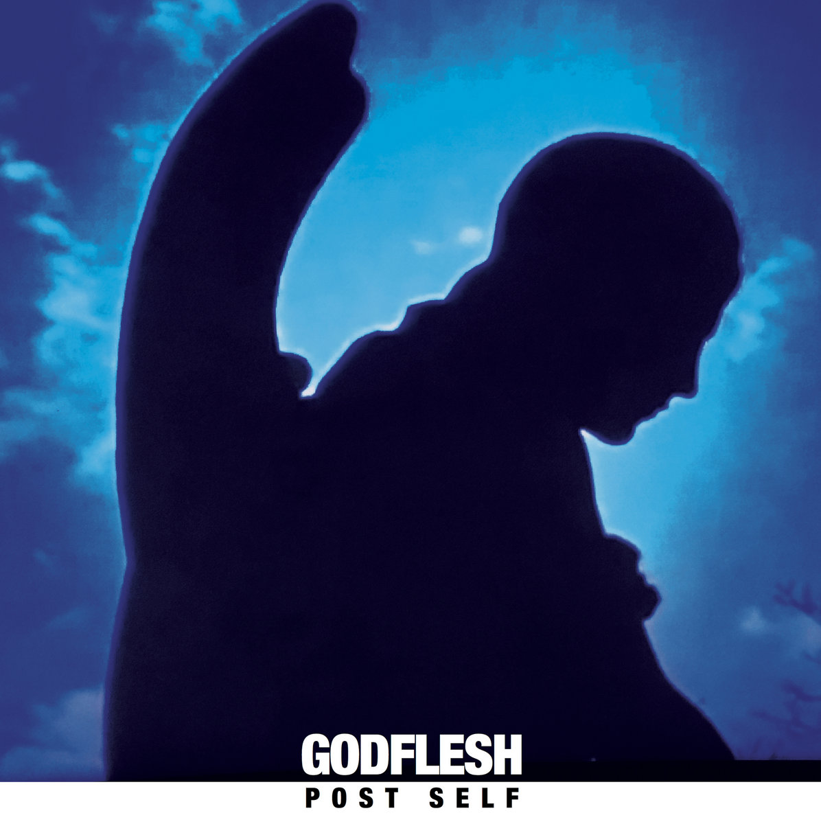 Резултат с изображение за Godflesh - Post-Self